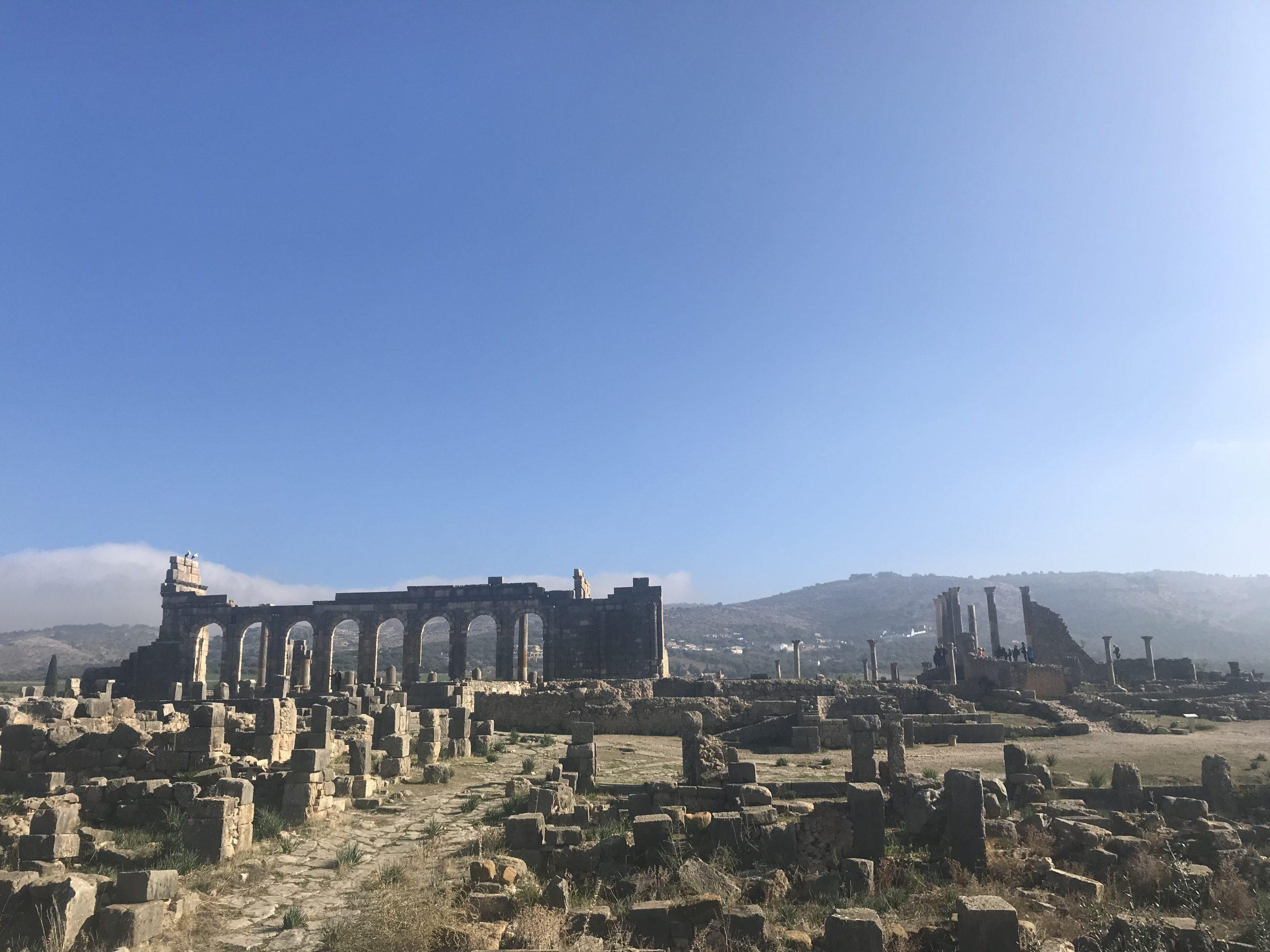 gallery image for 1 Day Private Trip Volubilis From Fes