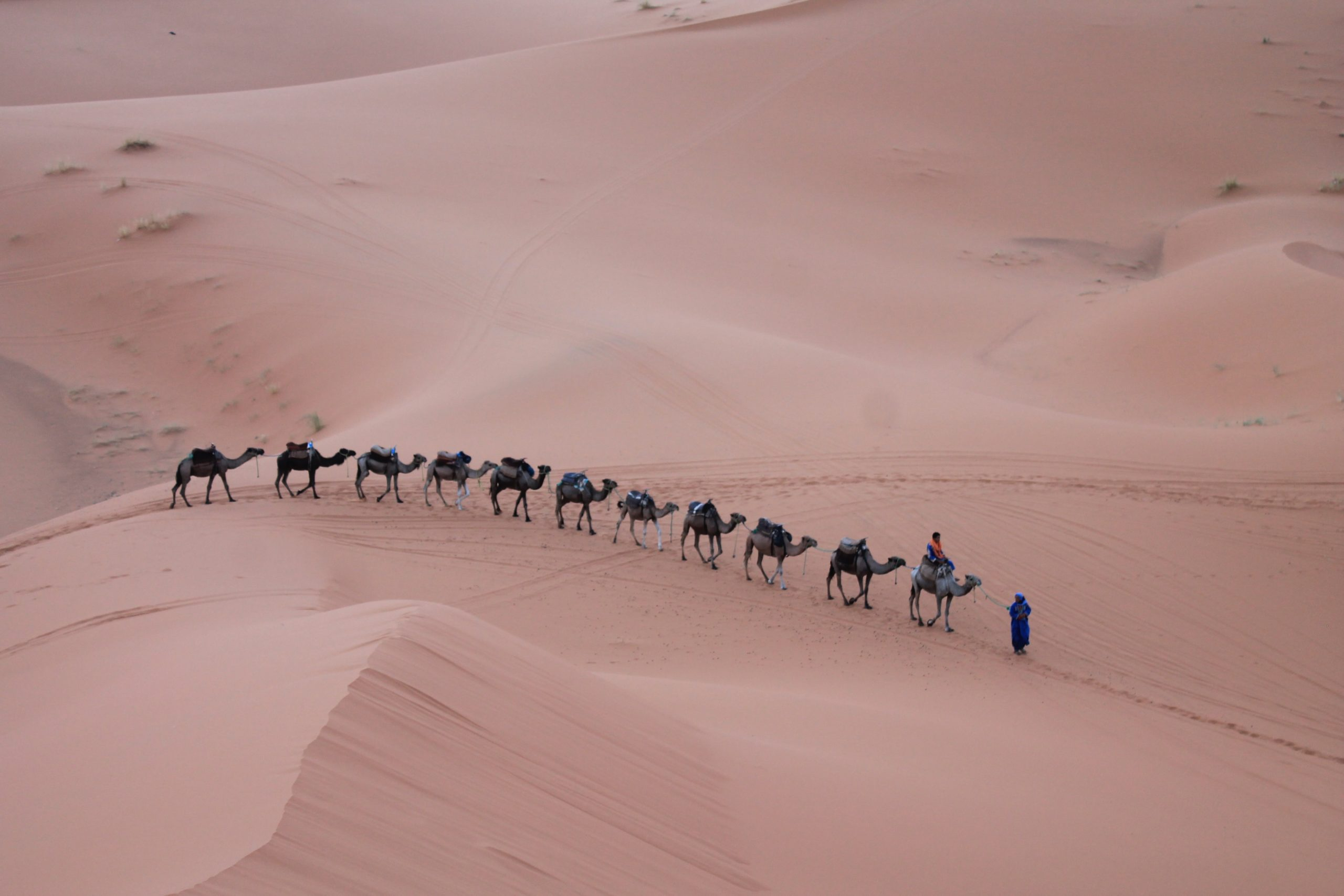 gallery image for 4 Day Private Tour Sahara Desert From Marrakech