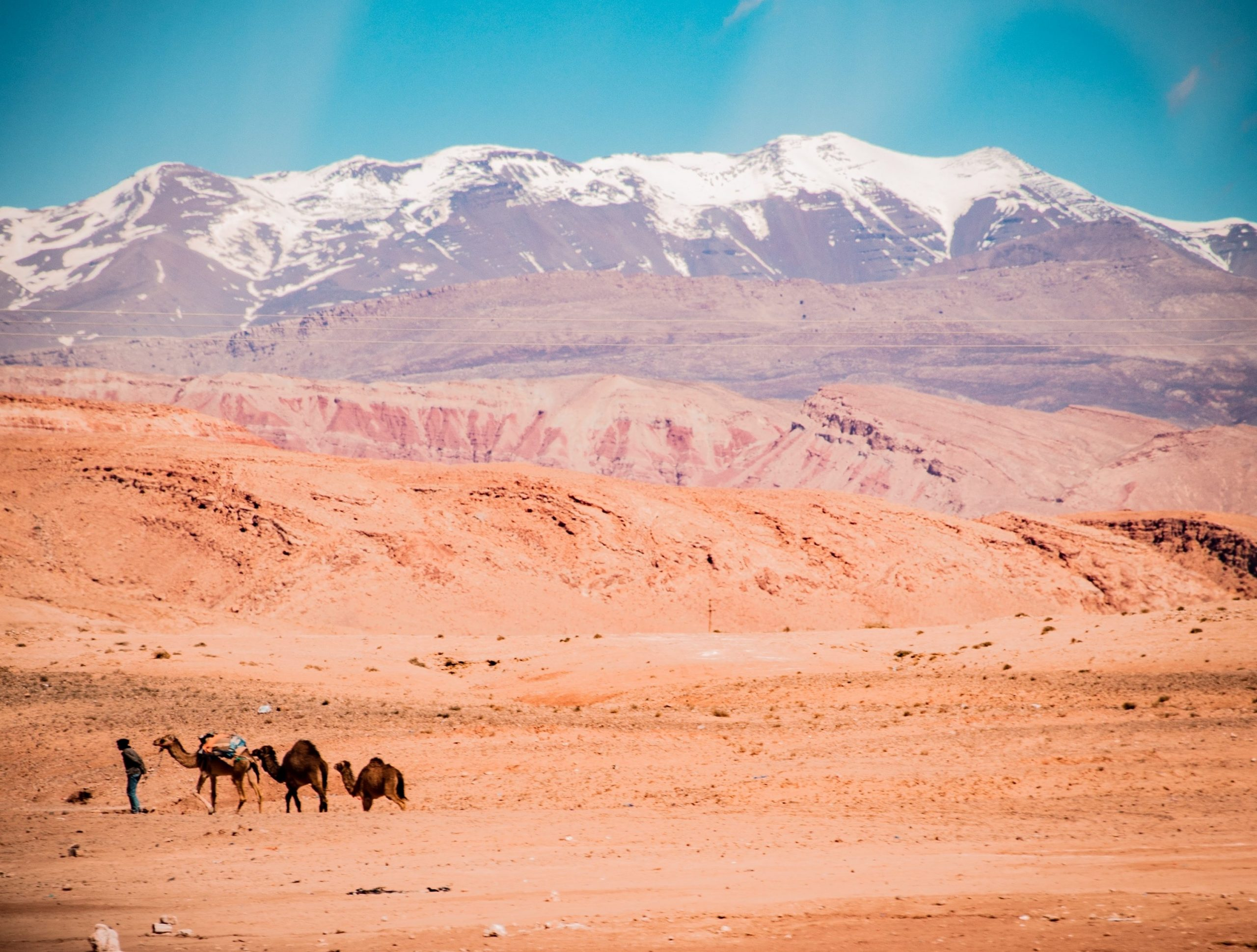 gallery image for Tranquil Morocco