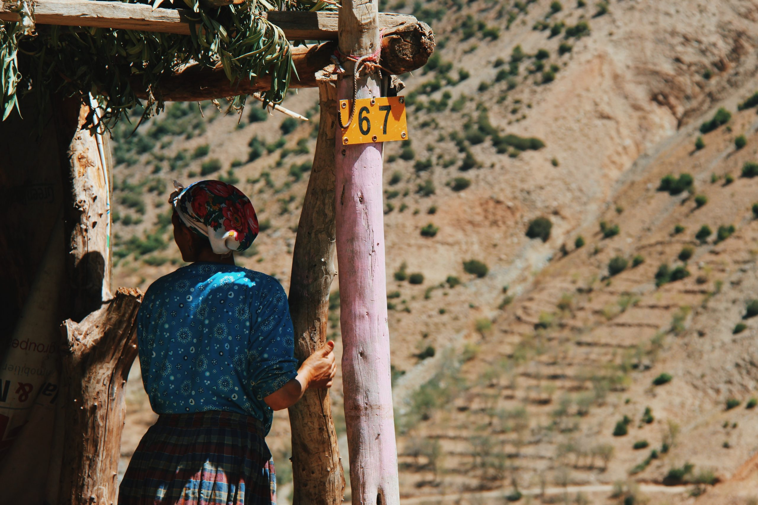 gallery image for The High Atlas Adventure