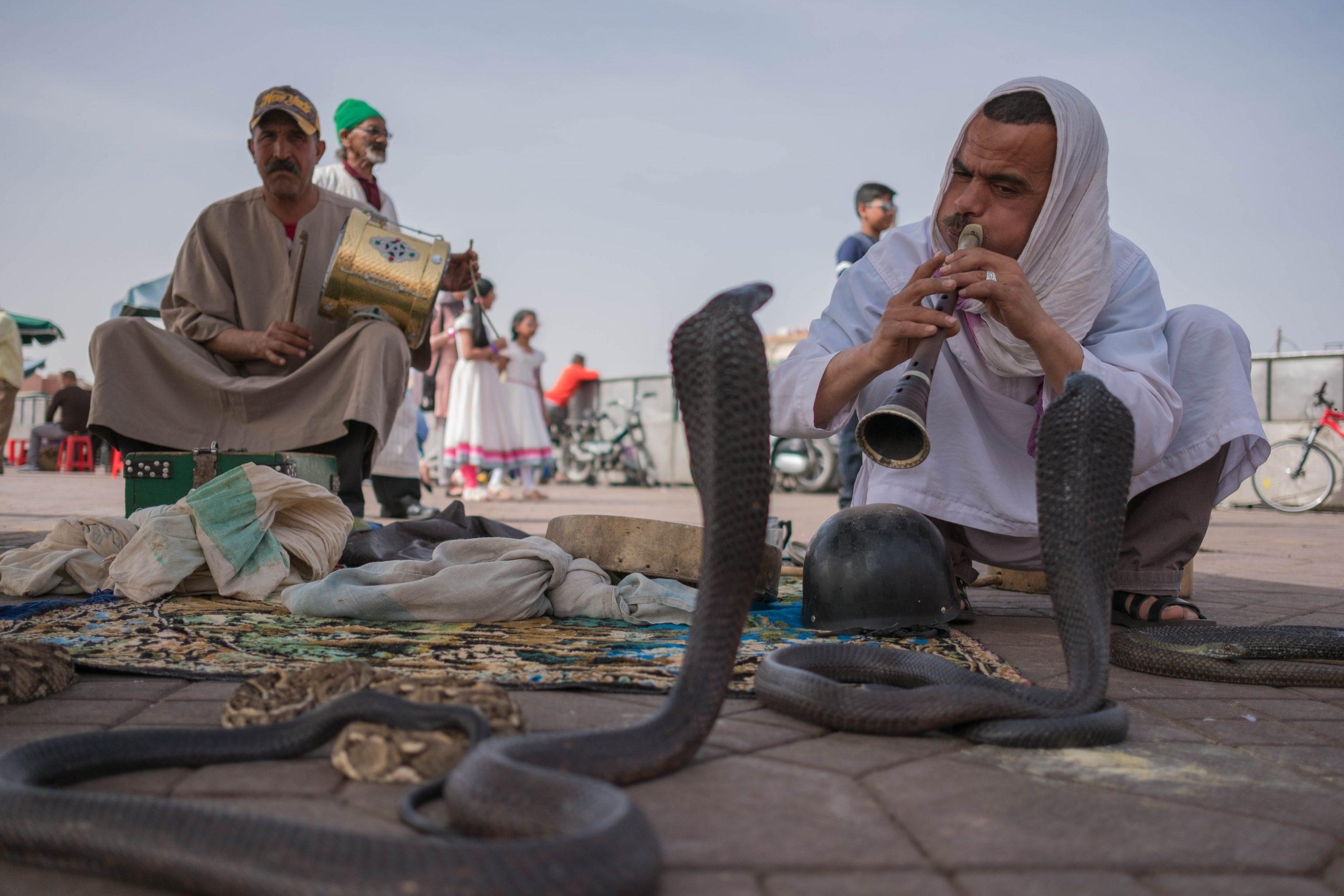 gallery image for Hidden Marrakech Through The Lens